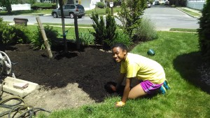 Elena worked all morning and put down about 8 bags of mulch.